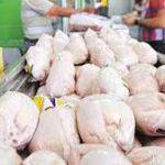قیمت مرغ در بازار به چند تومان رسیده است؟